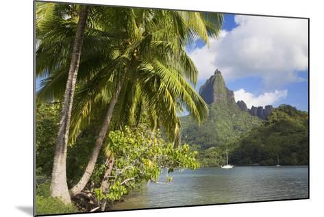 Opunohu Bay, Mo'Orea, Society Islands, French Polynesia-Ian Trower-Mounted Photographic Print