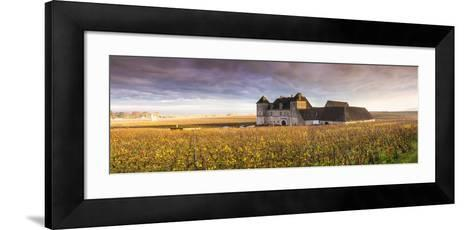 Vougeot Castle and Vineyards, Burgundy, France-Matteo Colombo-Framed Art Print