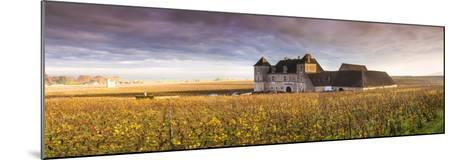 Vougeot Castle and Vineyards, Burgundy, France-Matteo Colombo-Mounted Photographic Print