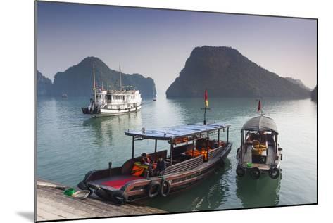 Vietnam, Halong Bay, Tito Island, Water Taxis-Walter Bibikow-Mounted Photographic Print