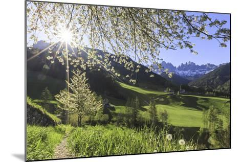 St. Magdalena and the Odle Group. Funes Valley South Tyrol Dolomites Italy Europe-ClickAlps-Mounted Photographic Print