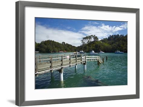 Omaha Cove, Leigh, North Auckland, North Island, New Zealand-David Wall-Framed Art Print