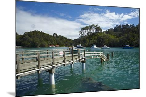Omaha Cove, Leigh, North Auckland, North Island, New Zealand-David Wall-Mounted Photographic Print