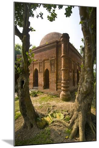 Old Mosque in Soneragon, Bangladesh, Asia-Michael Runkel-Mounted Photographic Print