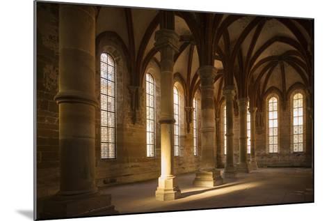 Germany, Baden-Wurttemburg, Maulbronn, Kloster Maulbronn Abbey, Cloister-Walter Bibikow-Mounted Photographic Print