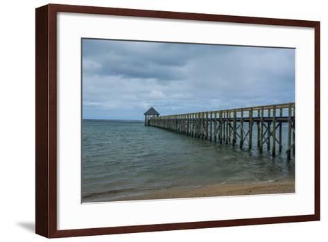 Long Wooden Pier, Coral Coast, Viti Levu, Fiji, South Pacific-Michael Runkel-Framed Art Print