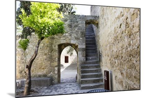 Portugal, Lisbon. Stairway Inside the Walls of the Sao Jorge Castle-Emily Wilson-Mounted Photographic Print