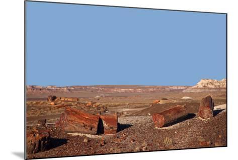 USA, Arizona, Petrified Forest National Park. Crystal Forest-Kymri Wilt-Mounted Photographic Print