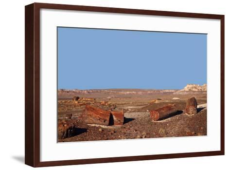 USA, Arizona, Petrified Forest National Park. Crystal Forest-Kymri Wilt-Framed Art Print