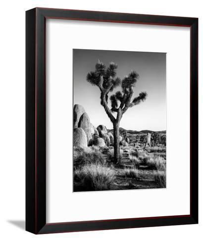 USA, California, Joshua Tree National Park at Hidden Valley-Ann Collins-Framed Art Print