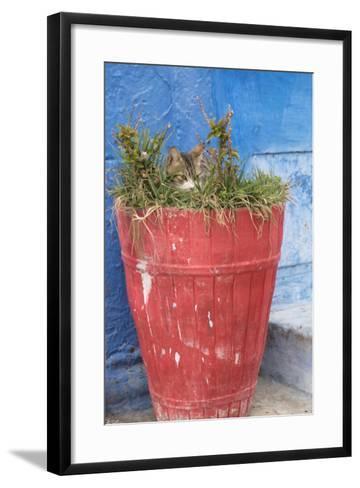 Morocco, Rabat, Sale, Kasbah Des Oudaias, Small Narrow Streets and Blue Neighborhood-Emily Wilson-Framed Art Print