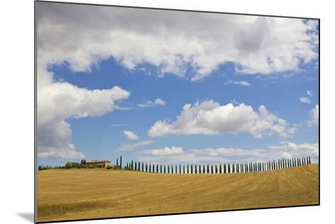 Italy, Tuscany. Cypress Tree Alley and Farm House-Jaynes Gallery-Mounted Photographic Print