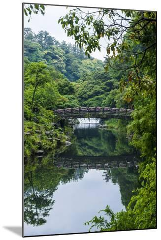Stone Bridge with Flowers in Seogwipo, Island of Jejudo, South Korea-Michael Runkel-Mounted Photographic Print
