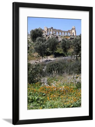 Morocco, Volubilis. Ancient Roman Ruins at Volubilis-Kymri Wilt-Framed Art Print