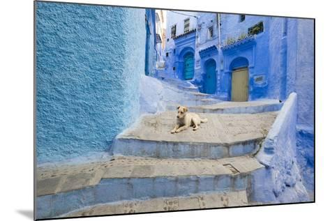 Morocco. Blue Narrow Streets and Neighborhooda of Chaouen-Emily Wilson-Mounted Photographic Print