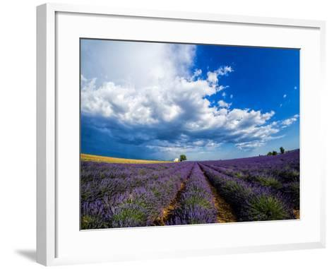 France, Provence, Old Farm House in Field of Lavender-Terry Eggers-Framed Art Print