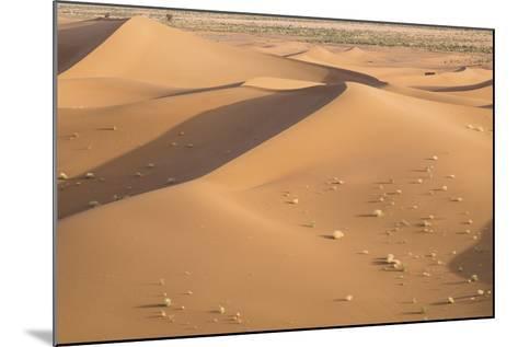Morocco. Erg Chegaga Is a Saharan Sand Dune-Emily Wilson-Mounted Photographic Print