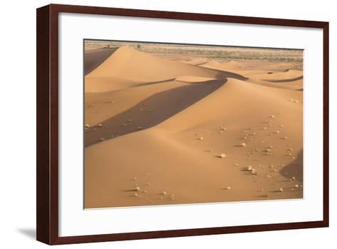 Morocco. Erg Chegaga Is a Saharan Sand Dune-Emily Wilson-Framed Art Print