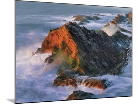 USA, Oregon, Shore Acres State Park. Sunset Light on Ocean Shore Cliffs-Jaynes Gallery-Mounted Photographic Print
