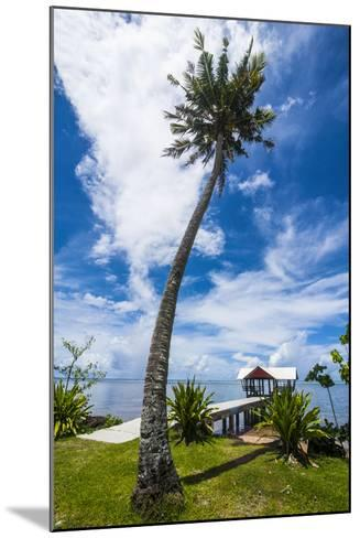 Boat Pier in the North of the Island of Babeldaob, Palau, Central Pacific-Michael Runkel-Mounted Photographic Print