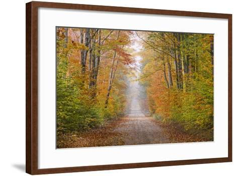 Road in Fall Color Schoolcraft County, Upper Peninsula, Michigan-Richard and Susan Day-Framed Art Print