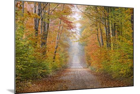 Road in Fall Color Schoolcraft County, Upper Peninsula, Michigan-Richard and Susan Day-Mounted Photographic Print