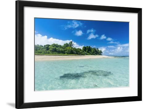 Tonga, South Pacific-Michael Runkel-Framed Art Print