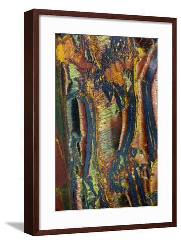 Tiger Eye-Darrell Gulin-Framed Art Print