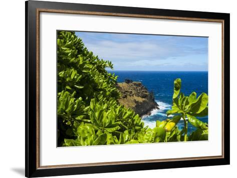 Ofu Island, Manu'A Island Group, American Samoa, South Pacific-Michael Runkel-Framed Art Print