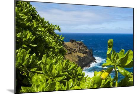 Ofu Island, Manu'A Island Group, American Samoa, South Pacific-Michael Runkel-Mounted Photographic Print