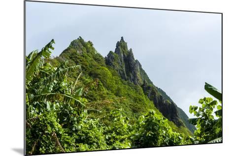 Ofu Island, Manu'A Island Group, American Samoa, South Pacific-Michael Runkel-Mounted Photographic Print