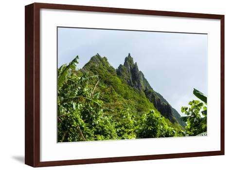 Ofu Island, Manu'A Island Group, American Samoa, South Pacific-Michael Runkel-Framed Art Print