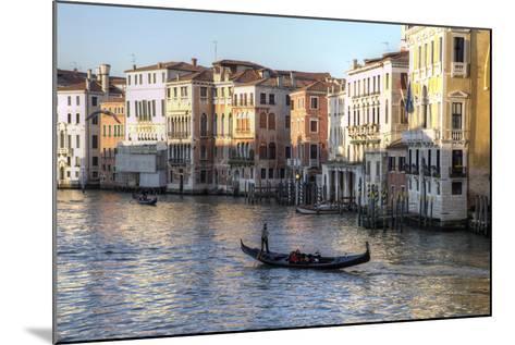 Gondolas Along the Grand Canal, Venice, Italy-Darrell Gulin-Mounted Photographic Print