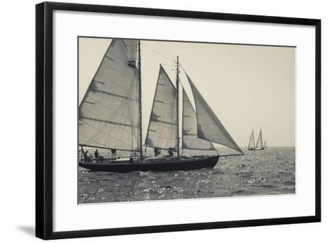 USA, Massachusetts, Cape Ann, Gloucester, America's Oldest Seaport, Annual Schooner Festival-Walter Bibikow-Framed Art Print