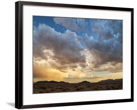 USA, California, Mojave National Preserve. Desert Rain Squall at Sunset-Ann Collins-Framed Art Print