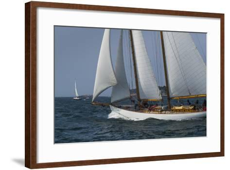 USA, Massachusetts, Cape Ann, Gloucester, America's Oldest Seaport, Annual Schooner Festival-Walter Bibikow-Framed Art Print