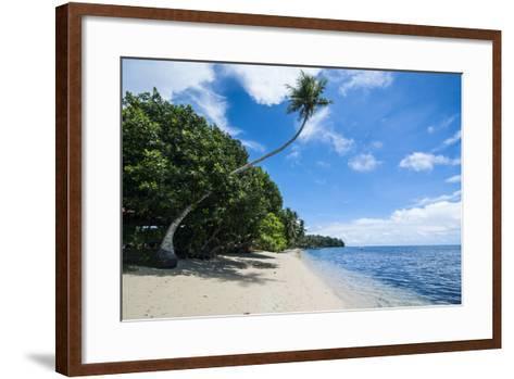 Beautiful White Sand Beach and Palm Trees on Yap Island, Micronesia-Michael Runkel-Framed Art Print