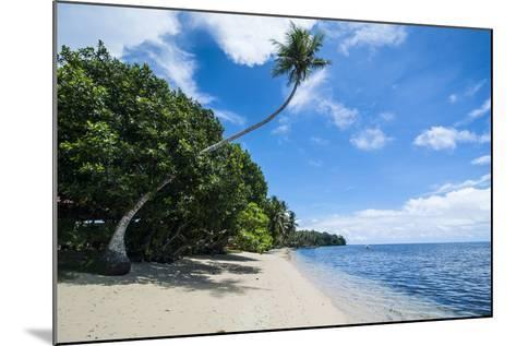 Beautiful White Sand Beach and Palm Trees on Yap Island, Micronesia-Michael Runkel-Mounted Photographic Print