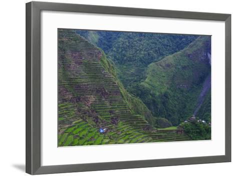 Batad Rice Terraces, Banaue, Luzon, Philippines-Michael Runkel-Framed Art Print