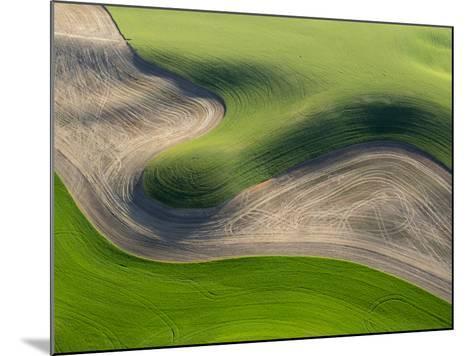 Washington, Palouse, Whitman County. Aerial of Palouse Region-Julie Eggers-Mounted Photographic Print