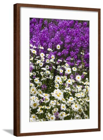 Washington, Palouse, Wildflowers Along the Country Backroad-Terry Eggers-Framed Art Print