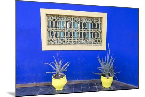Morocco, Marrakech, Potted Succulent Plants Outside a Blue Building-Emily Wilson-Mounted Photographic Print