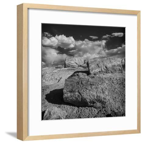 Petrified Forest National Park, Arizona-Jerry Ginsberg-Framed Art Print