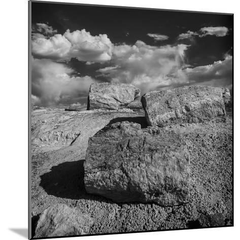 Petrified Forest National Park, Arizona-Jerry Ginsberg-Mounted Photographic Print