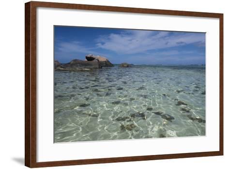 Indian Ocean, Seychelles, Mahe, St. Anne Marine National Park, Moyenne Island-Cindy Miller Hopkins-Framed Art Print