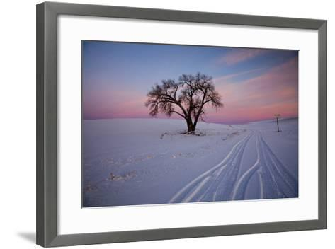 Washington, Sunset Bathed Lone Tree in Snow Covered Winter Field-Terry Eggers-Framed Art Print