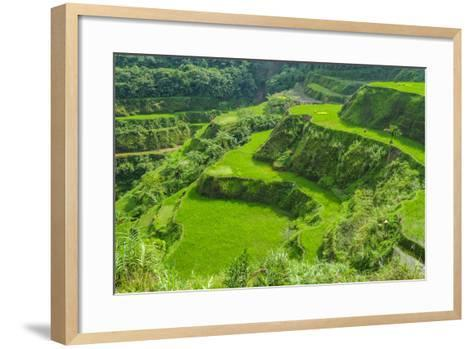 Hapao Rice Terraces, Part of the World Heritage Site Banaue, Luzon, Philippines-Michael Runkel-Framed Art Print