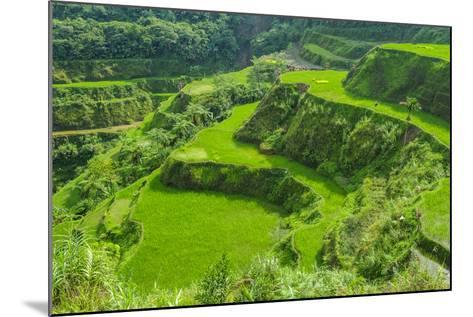 Hapao Rice Terraces, Part of the World Heritage Site Banaue, Luzon, Philippines-Michael Runkel-Mounted Photographic Print