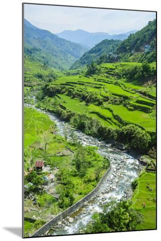 Hapao Rice Terraces, World Heritage Site, Banaue, Luzon, Philippines-Michael Runkel-Mounted Photographic Print