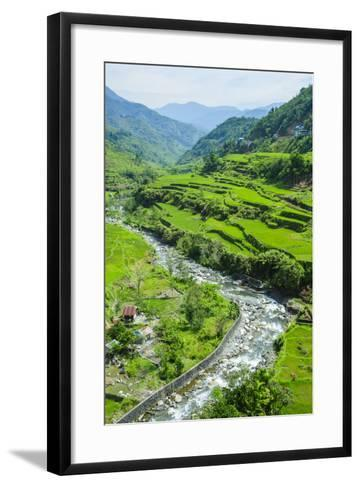 Hapao Rice Terraces, World Heritage Site, Banaue, Luzon, Philippines-Michael Runkel-Framed Art Print